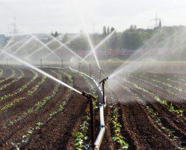 Irrigação por aspersores