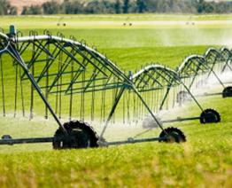 Irrigação por Pivot Central